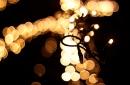 Day 101 – 1001 lights