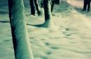 Day 143 – Frozen feet