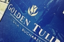 Day 93 – Golden Tulip