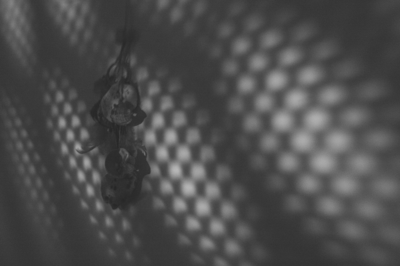 365-lensbaby-teoinpixeland-ro-day-131-1289