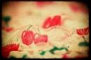 Day 208 – Cherry mood