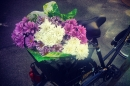 Day 315 – Flowers delivery for a new family