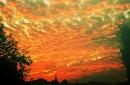 Day 19 – Ordinary sky, ordinary colors